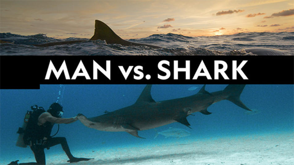 Watch Man vs. Shark Streaming Online | Hulu (Free Trial)